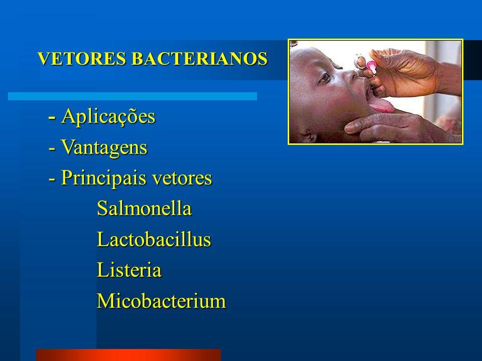VETORES BACTERIANOS - Aplicações - Vantagens - Principais vetores SalmonellaLactobacillusListeriaMicobacterium