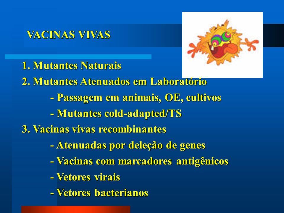 VACINAS VIVAS 1. Mutantes Naturais 2. Mutantes Atenuados em Laboratório - Passagem em animais, OE, cultivos - Mutantes cold-adapted/TS 3. Vacinas viva