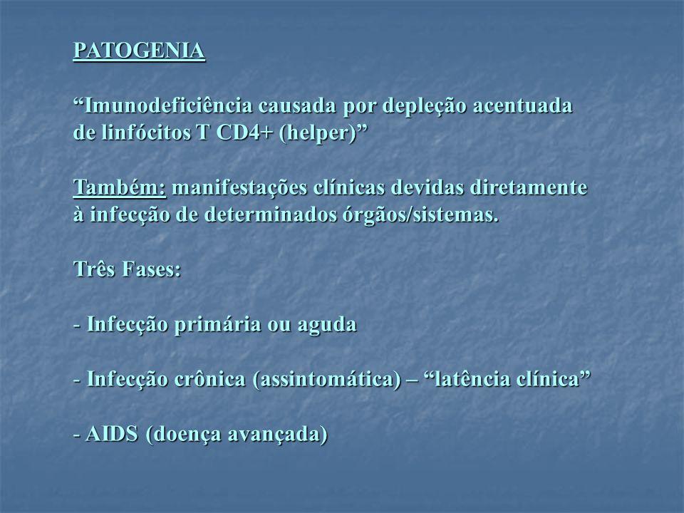 PATOGENIA Imunodeficiência causada por depleção acentuada de linfócitos T CD4+ (helper) Também: manifestações clínicas devidas diretamente à infecção