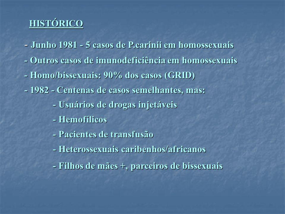 HISTÓRICO - Junho 1981 - 5 casos de P.carinii em homossexuais - Outros casos de imunodeficiência em homossexuais - Homo/bissexuais: 90% dos casos (GRI