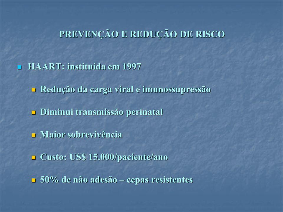 PREVENÇÃO E REDUÇÃO DE RISCO HAART: instituída em 1997 HAART: instituída em 1997 Redução da carga viral e imunossupressão Redução da carga viral e imu