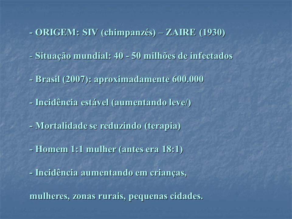 - ORIGEM: SIV (chimpanzés) – ZAIRE (1930) - Situação mundial: 40 - 50 milhões de infectados - Brasil (2007): aproximadamente 600.000 - Incidência está