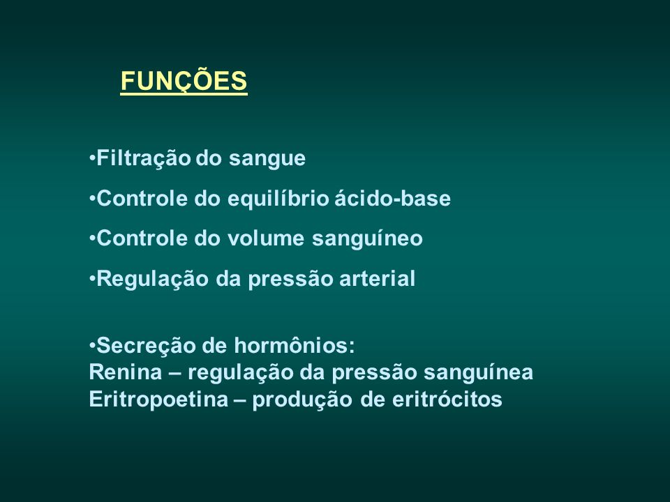 FUNÇÕES Filtração do sangue Controle do equilíbrio ácido-base Controle do volume sanguíneo Regulação da pressão arterial Secreção de hormônios: Renina