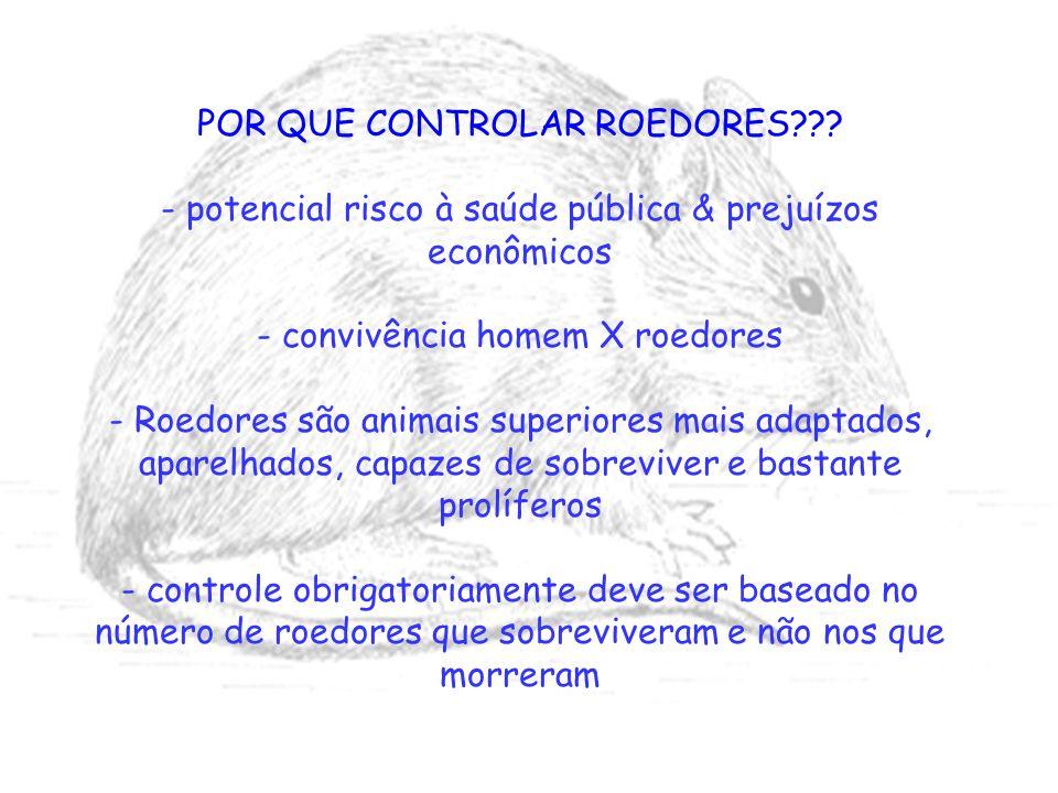 POR QUE CONTROLAR ROEDORES??? - potencial risco à saúde pública & prejuízos econômicos - convivência homem X roedores - Roedores são animais superiore