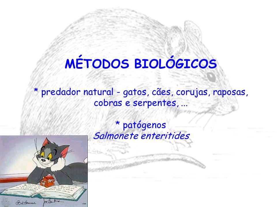 MÉTODOS BIOLÓGICOS * predador natural - gatos, cães, corujas, raposas, cobras e serpentes,... * patógenos Salmonete enteritides