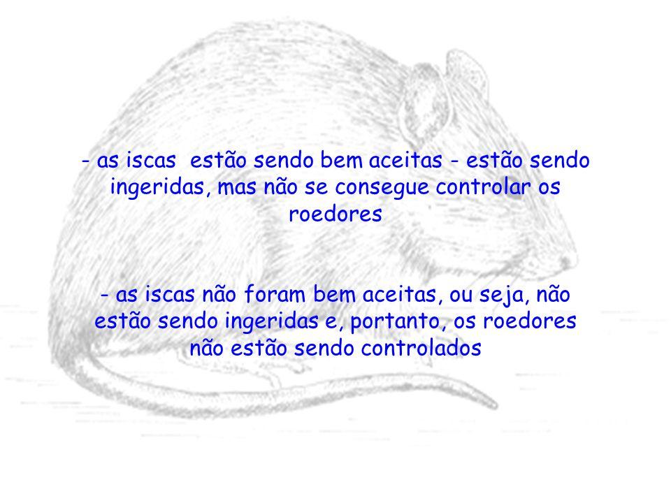 - as iscas estão sendo bem aceitas - estão sendo ingeridas, mas não se consegue controlar os roedores - as iscas não foram bem aceitas, ou seja, não e