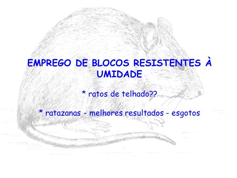 EMPREGO DE BLOCOS RESISTENTES À UMIDADE * ratos de telhado?? * ratazanas - melhores resultados - esgotos