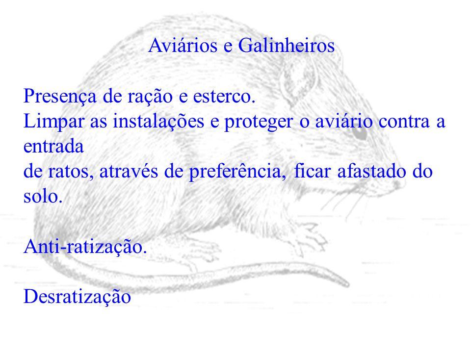 Aviários e Galinheiros Presença de ração e esterco. Limpar as instalações e proteger o aviário contra a entrada de ratos, através de preferência, fica