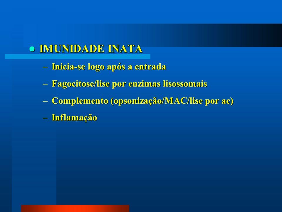 IMUNIDADE INATA IMUNIDADE INATA –Inicia-se logo após a entrada –Fagocitose/lise por enzimas lisossomais –Complemento (opsonização/MAC/lise por ac) –In