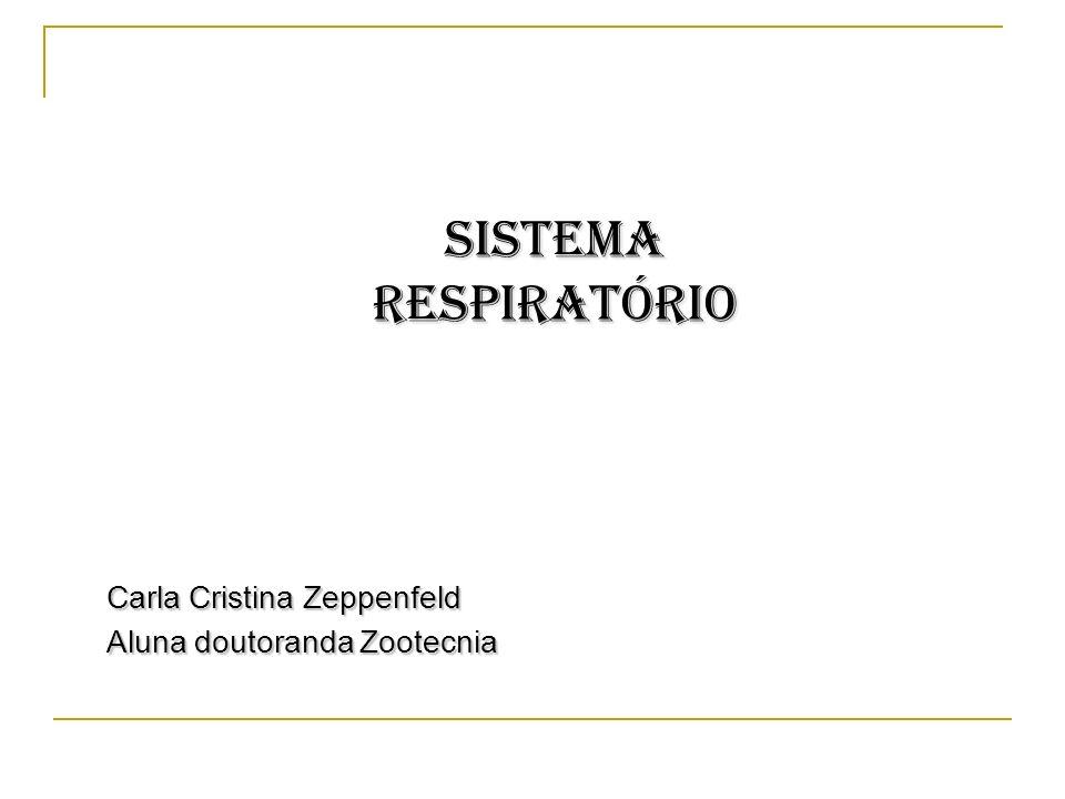 SISTEMA RESPIRATÓRIO Carla Cristina Zeppenfeld Aluna doutoranda Zootecnia
