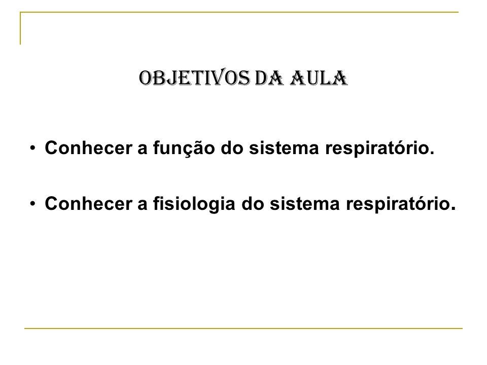 Objetivos da Aula Conhecer a função do sistema respiratório. Conhecer a fisiologia do sistema respiratório.