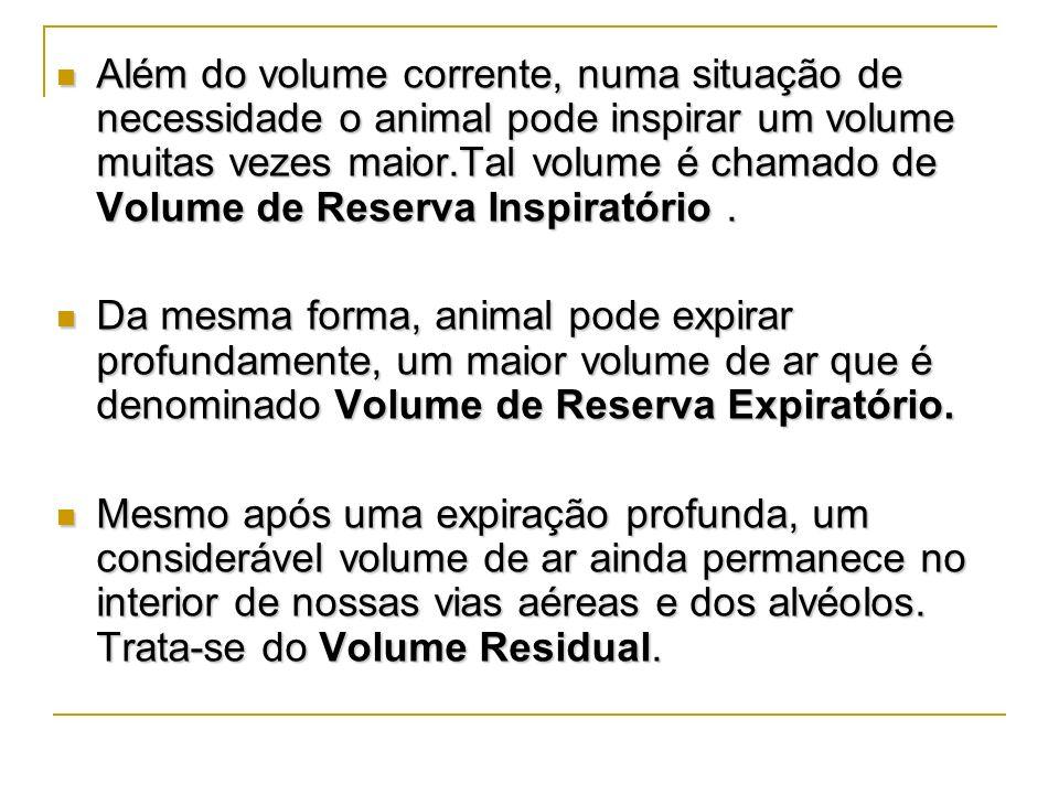 Além do volume corrente, numa situação de necessidade o animal pode inspirar um volume muitas vezes maior.Tal volume é chamado de Volume de Reserva In