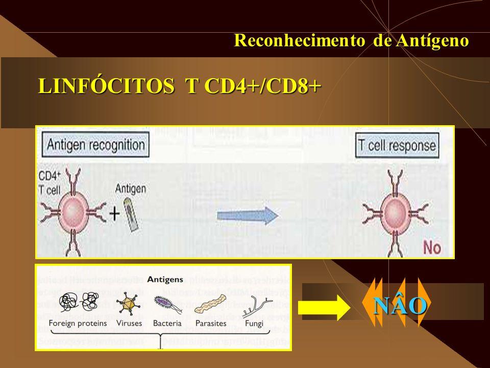 Reconhecimento de Antígeno LINFÓCITOS T CD4+/CD8+ NÂO