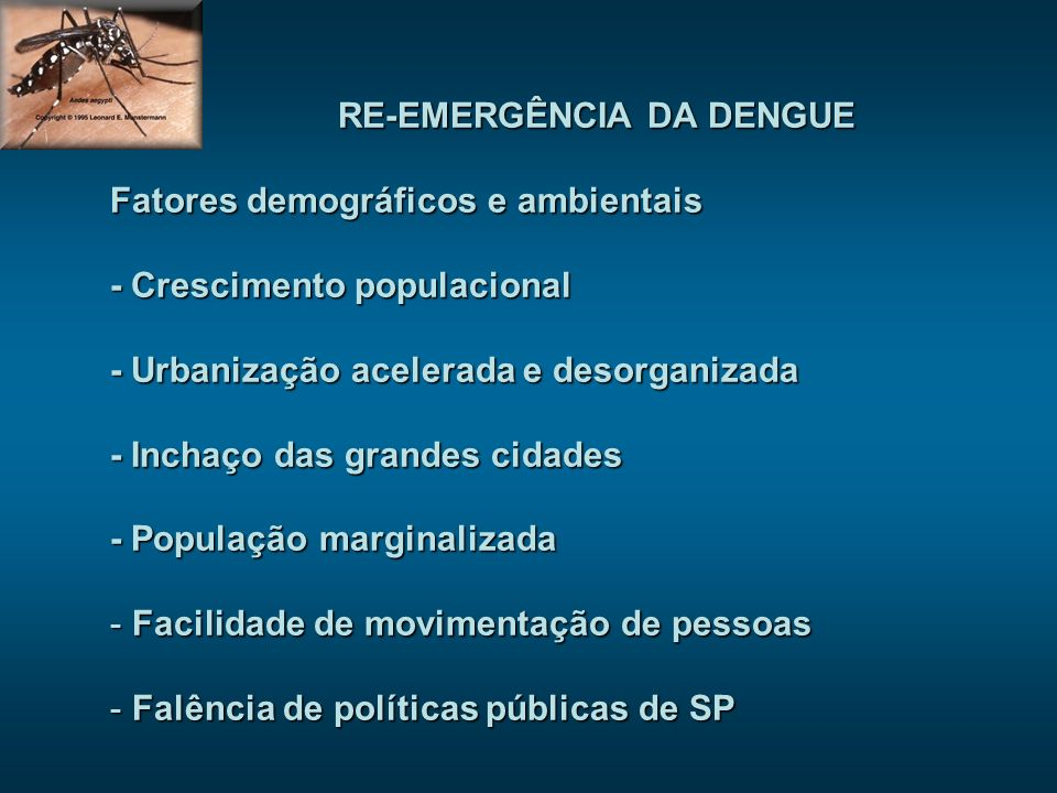 RE-EMERGÊNCIA DA DENGUE Fatores demográficos e ambientais - Crescimento populacional - Urbanização acelerada e desorganizada - Inchaço das grandes cid
