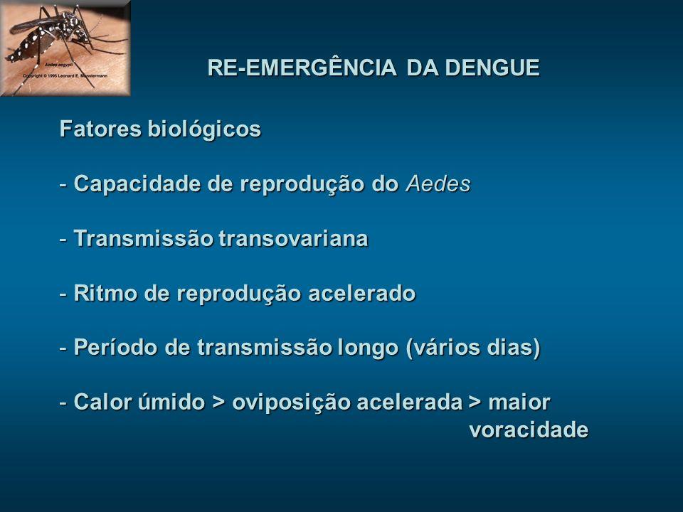 Fatores biológicos - Capacidade de reprodução do Aedes - Transmissão transovariana - Ritmo de reprodução acelerado - Período de transmissão longo (vár