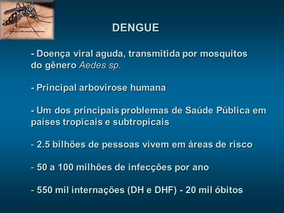 - Doença viral aguda, transmitida por mosquitos do gênero Aedes sp. - Principal arbovirose humana - Um dos principais problemas de Saúde Pública em pa