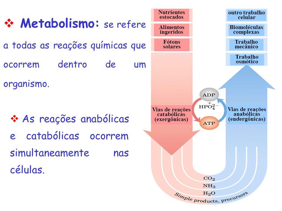 Disciplina de Biociências I Unidade 3 – Metabolismo Celular GLICÓLISE Profa. Cínthia P. Machado Tabchoury