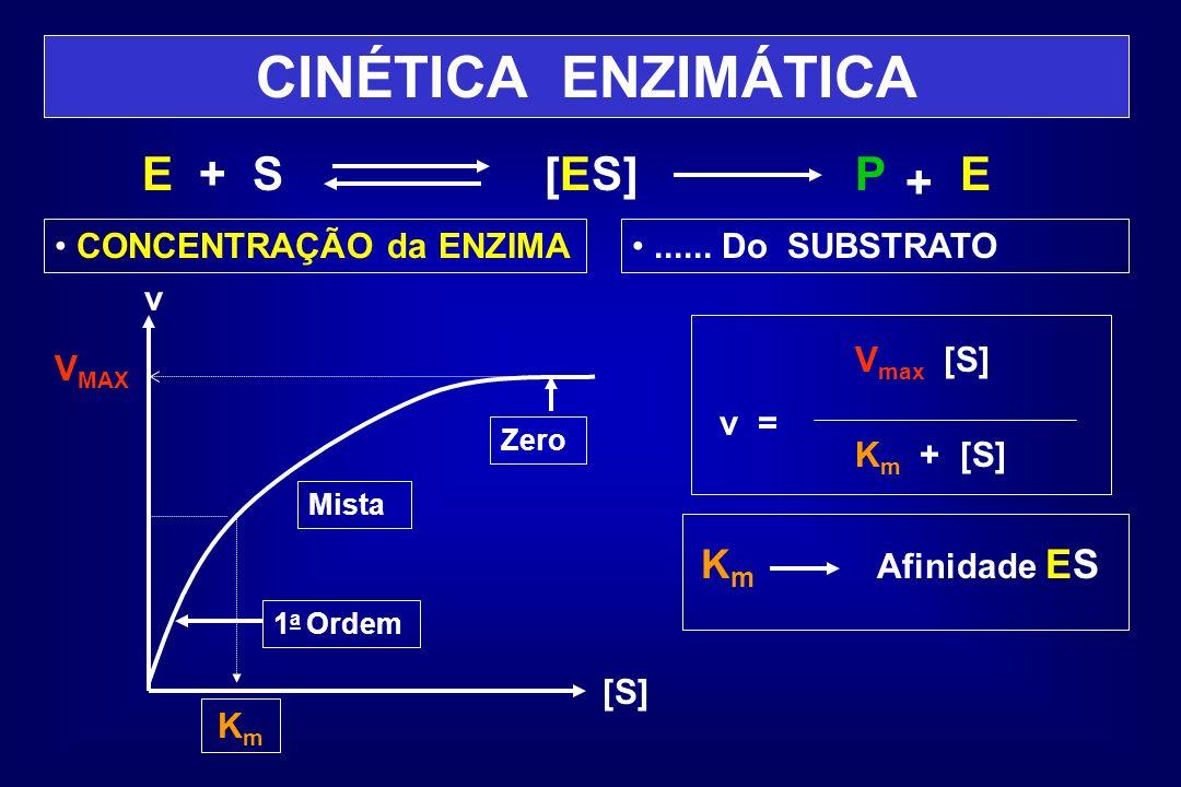 CINÉTICA ENZIMÁTICA E + S [ES]P + E CONCENTRAÇÃO da ENZIMA...... Do SUBSTRATO V MAX v [S] KmKm V max [S] v = K m + [S] K m Afinidade ES Zero Mista 1 a