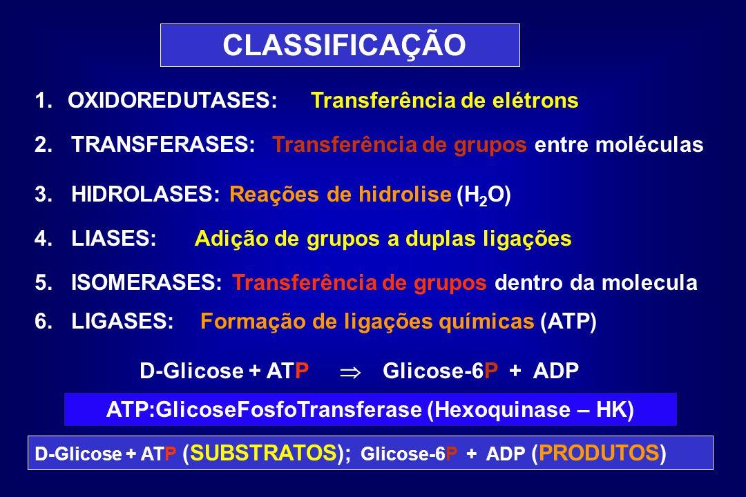 CLASSIFICAÇÃO 1.OXIDOREDUTASES: 2. TRANSFERASES: 3. HIDROLASES: Reações de hidrolise (H 2 O) 4. LIASES: 5. ISOMERASES: Transferência de grupos dentro