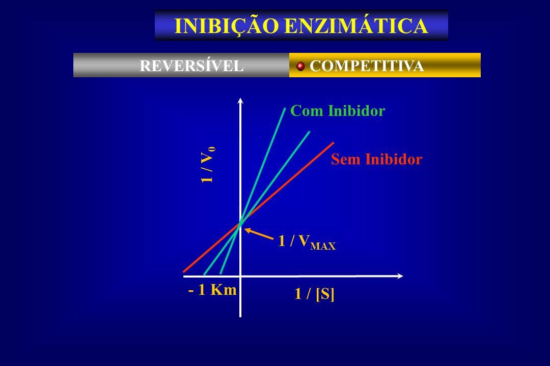 1 / V MAX Sem Inibidor - 1 Km 1 / V 0 1 / [S] Com Inibidor REVERSÍVEL COMPETITIVA INIBIÇÃO ENZIMÁTICA