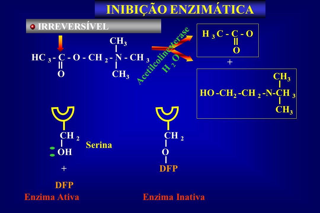 IRREVERSÍVEL HC 3 - C - O - CH 2 - N - CH 3 CH 3 O Acetilcolinesterase H 2 O + HO -CH 2 -CH 2 -N-CH 3 CH 3 H 3 C - C - O O CH 2 OH Serina Enzima Ativa