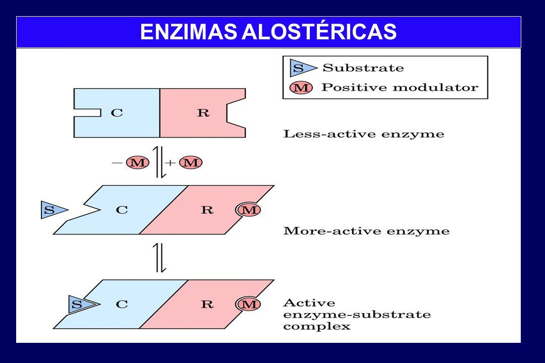 ENZIMAS ALOSTÉRICAS