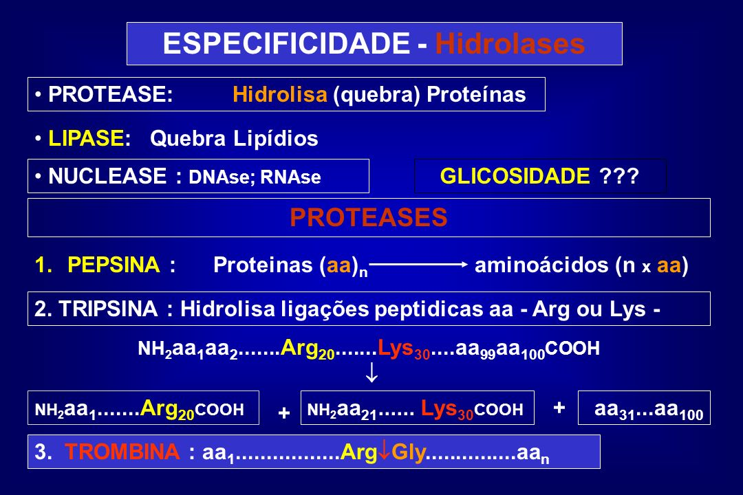 ESPECIFICIDADE - Hidrolases PROTEASE:Hidrolisa (quebra) Proteínas LIPASE:Quebra Lipídios NUCLEASE : DNAse; RNAse GLICOSIDADE ??? PROTEASES 1.PEPSINA :