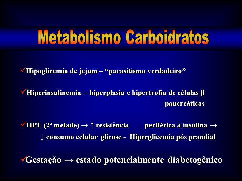 Hipoglicemia de jejum – parasitismo verdadeiro Hiperinsulinemia – hiperplasia e hipertrofia de células β pancreáticas HPL (2ª metade) resistência peri