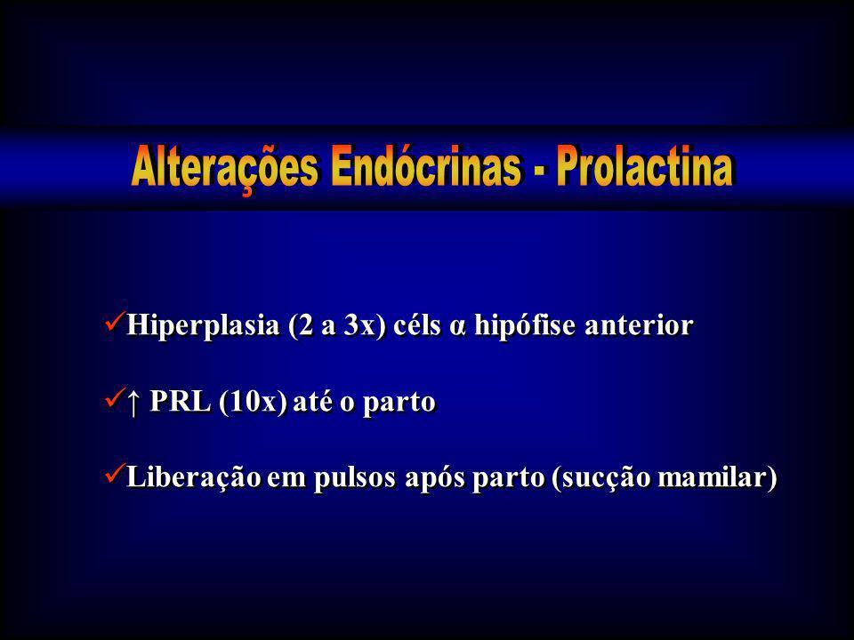 Hiperplasia (2 a 3x) céls α hipófise anterior PRL (10x) até o parto Liberação em pulsos após parto (sucção mamilar) Hiperplasia (2 a 3x) céls α hipófi