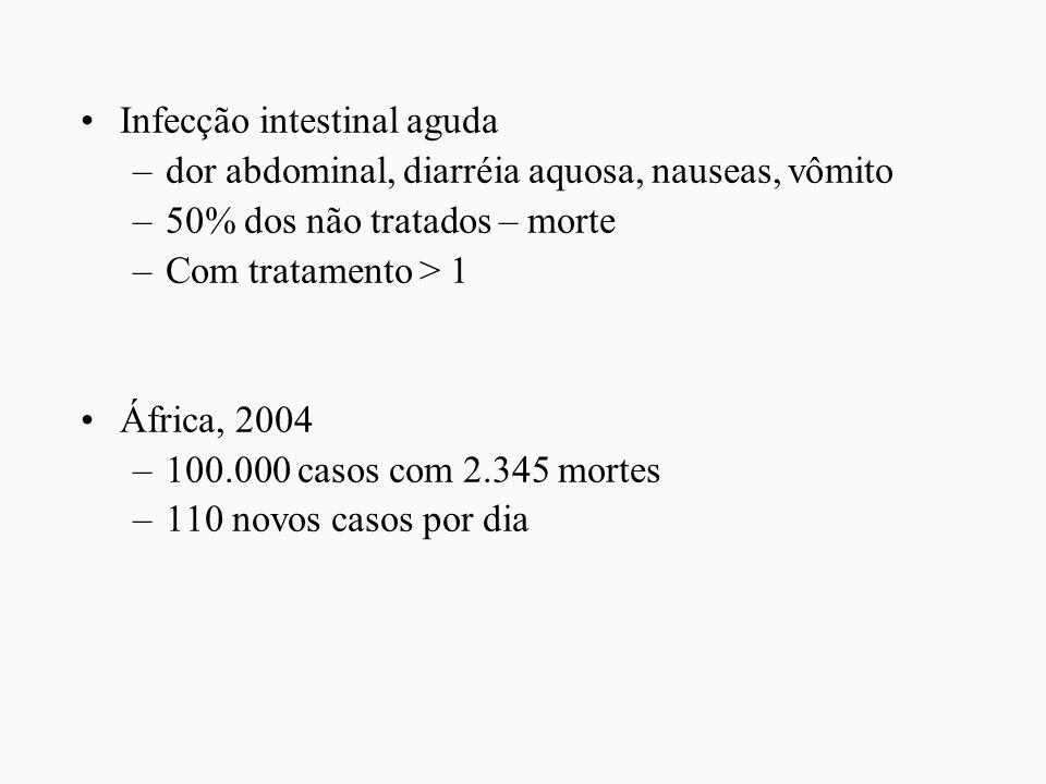 Infecção intestinal aguda –dor abdominal, diarréia aquosa, nauseas, vômito –50% dos não tratados – morte –Com tratamento > 1 África, 2004 –100.000 cas