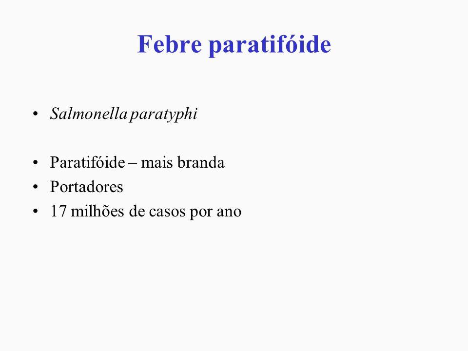 Febre paratifóide Salmonella paratyphi Paratifóide – mais branda Portadores 17 milhões de casos por ano