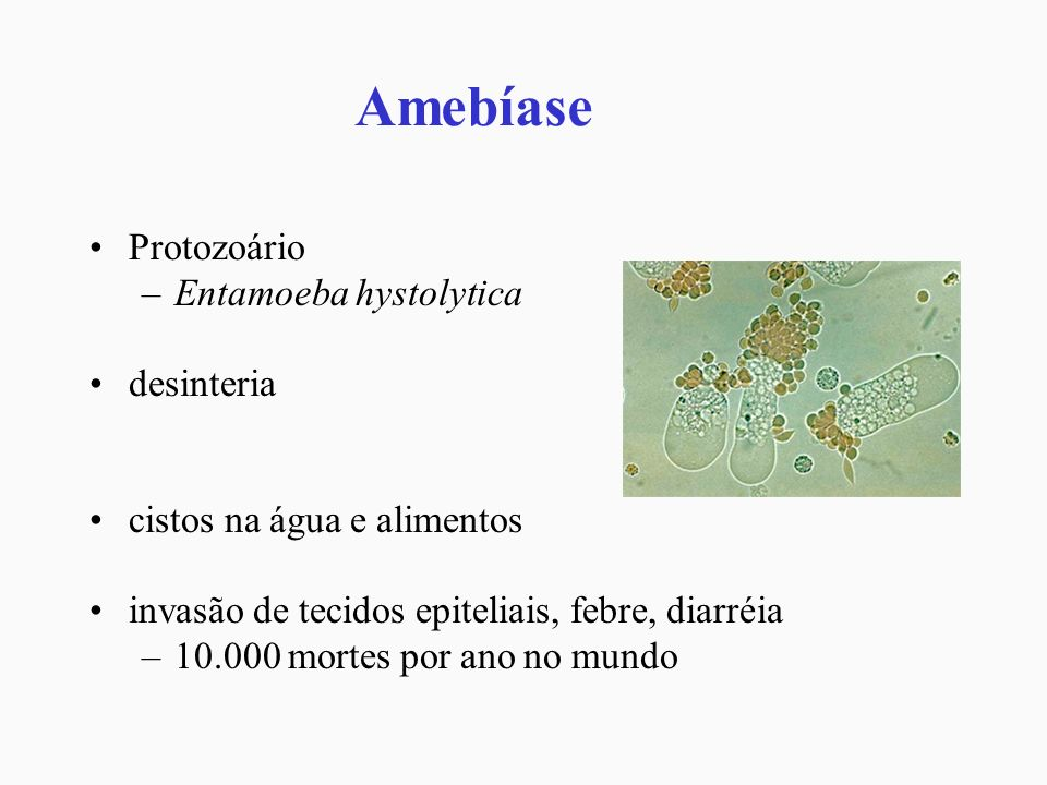 Amebíase Protozoário –Entamoeba hystolytica desinteria cistos na água e alimentos invasão de tecidos epiteliais, febre, diarréia –10.000 mortes por an