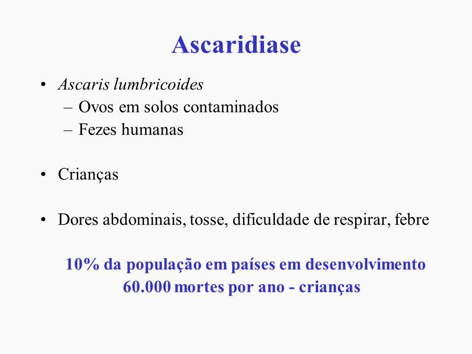 Ascaridiase Ascaris lumbricoides –Ovos em solos contaminados –Fezes humanas Crianças Dores abdominais, tosse, dificuldade de respirar, febre 10% da po