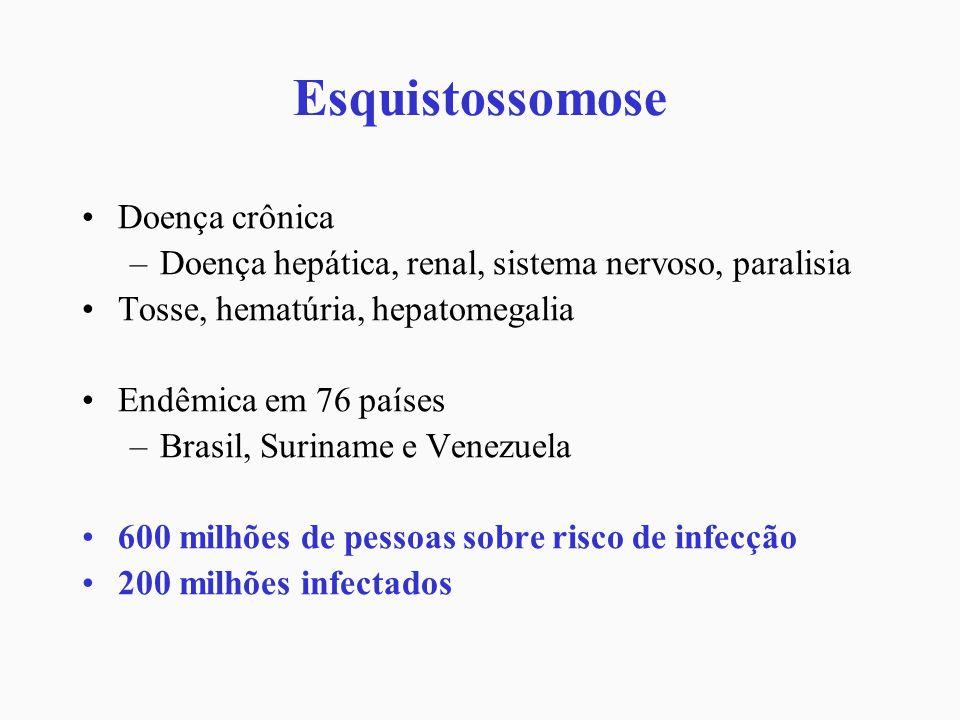 Esquistossomose Doença crônica –Doença hepática, renal, sistema nervoso, paralisia Tosse, hematúria, hepatomegalia Endêmica em 76 países –Brasil, Suri
