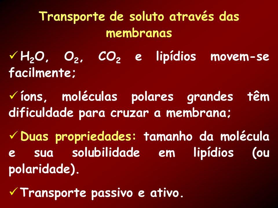 Transporte de soluto através das membranas H 2 O, O 2, CO 2 e lipídios movem-se facilmente; íons, moléculas polares grandes têm dificuldade para cruzar a membrana; Duas propriedades: tamanho da molécula e sua solubilidade em lipídios (ou polaridade).