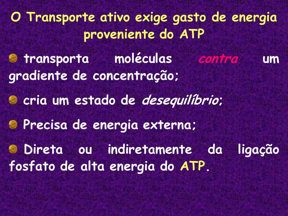 O Transporte ativo exige gasto de energia proveniente do ATP transporta moléculas contra um gradiente de concentração; cria um estado de desequilíbrio; Precisa de energia externa; Direta ou indiretamente da ligação fosfato de alta energia do ATP.
