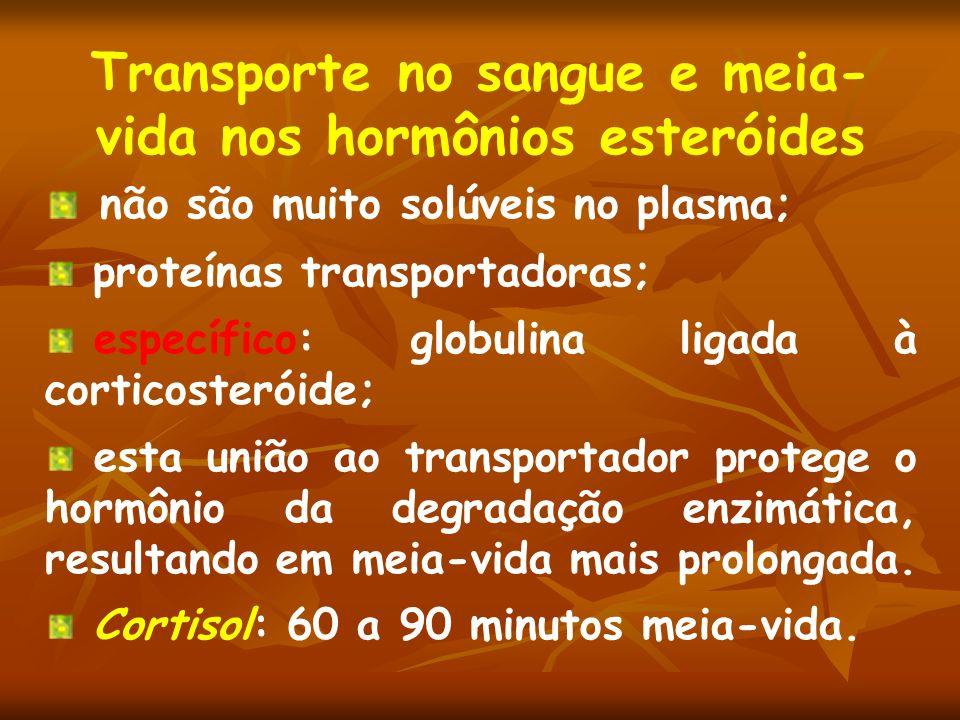 Transporte no sangue e meia- vida nos hormônios esteróides não são muito solúveis no plasma; proteínas transportadoras; específico: globulina ligada à
