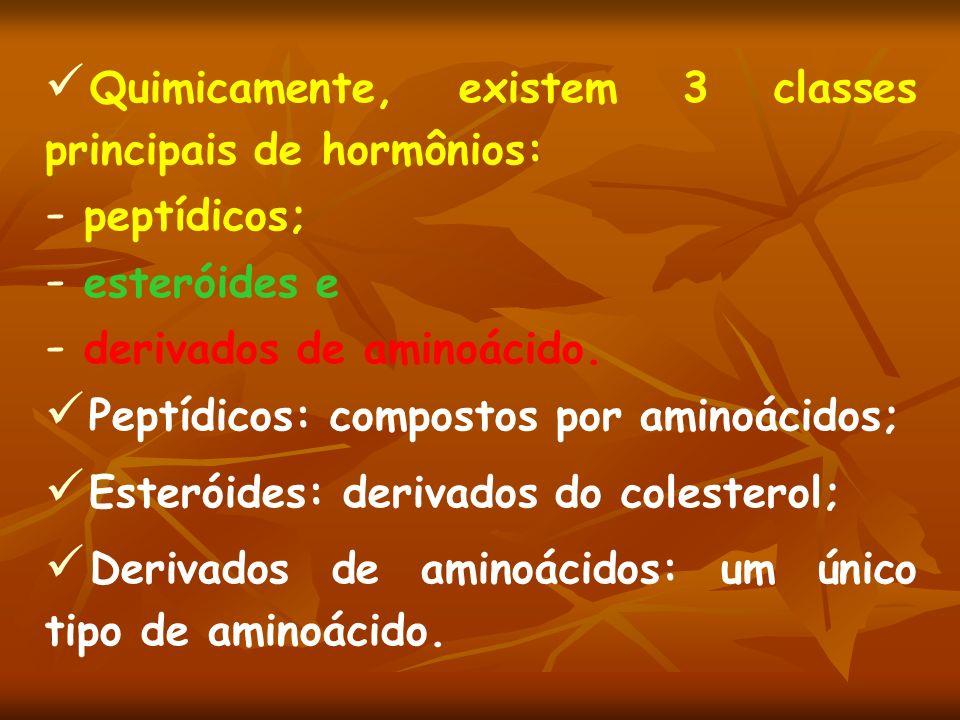 Quimicamente, existem 3 classes principais de hormônios: - peptídicos; - esteróides e - derivados de aminoácido. Peptídicos: compostos por aminoácidos