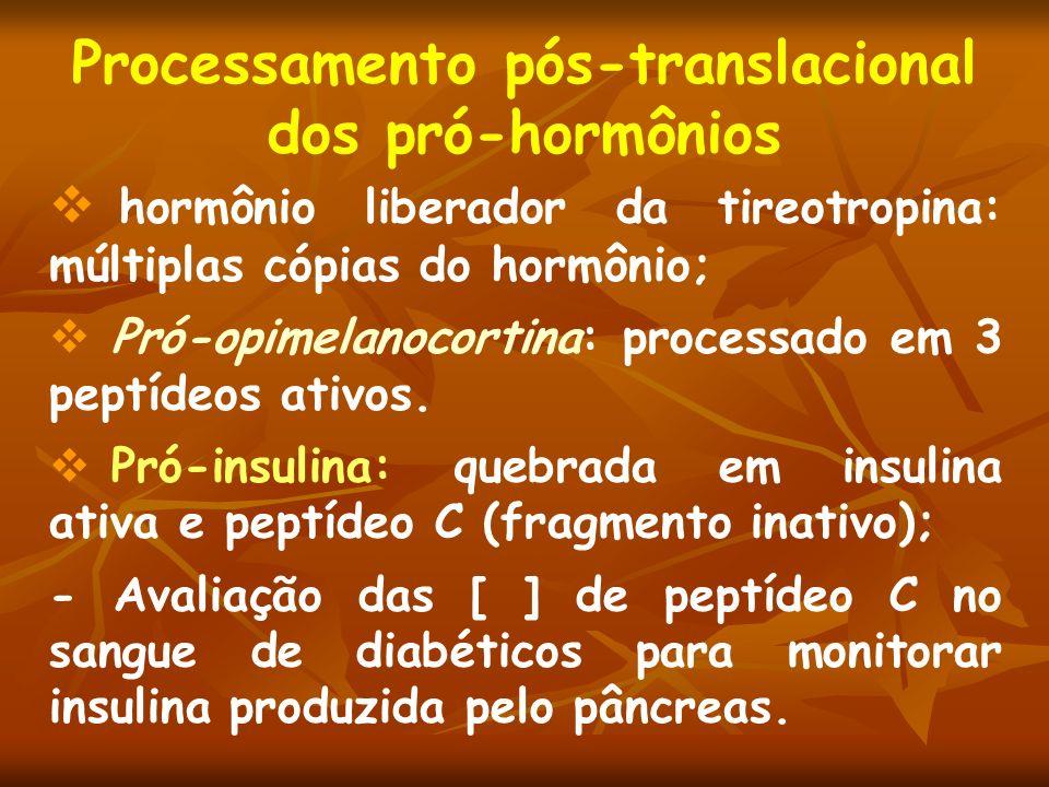 Processamento pós-translacional dos pró-hormônios hormônio liberador da tireotropina: múltiplas cópias do hormônio; Pró-opimelanocortina: processado e