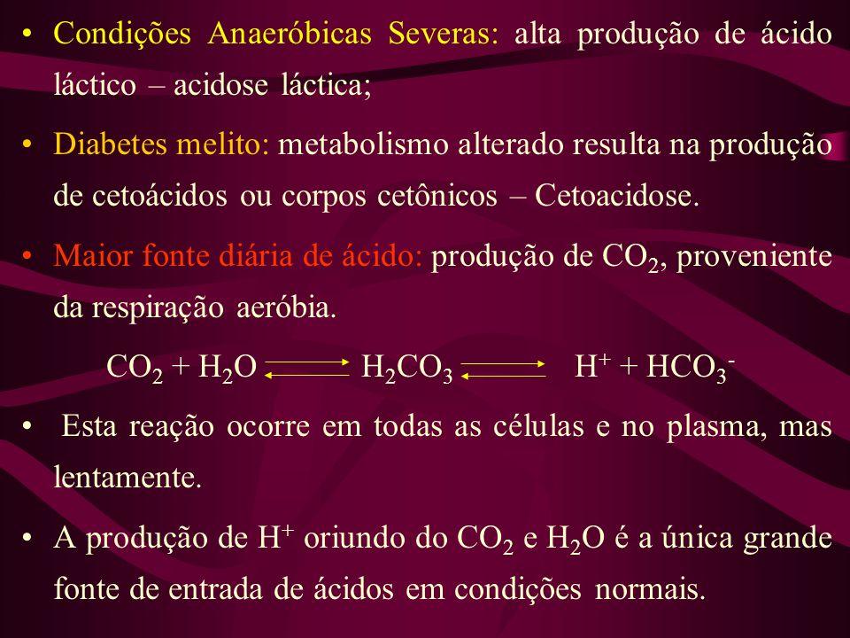 Condições Anaeróbicas Severas: alta produção de ácido láctico – acidose láctica; Diabetes melito: metabolismo alterado resulta na produção de cetoácid