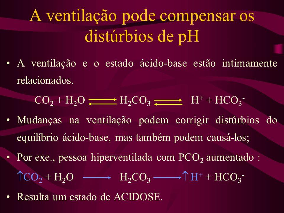 A ventilação pode compensar os distúrbios de pH A ventilação e o estado ácido-base estão intimamente relacionados. CO 2 + H 2 OH 2 CO 3 H + + HCO 3 -