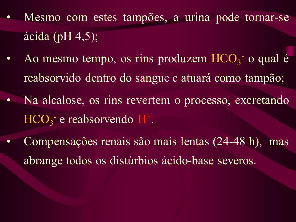 Mesmo com estes tampões, a urina pode tornar-se ácida (pH 4,5); Ao mesmo tempo, os rins produzem HCO 3 - o qual é reabsorvido dentro do sangue e atuar