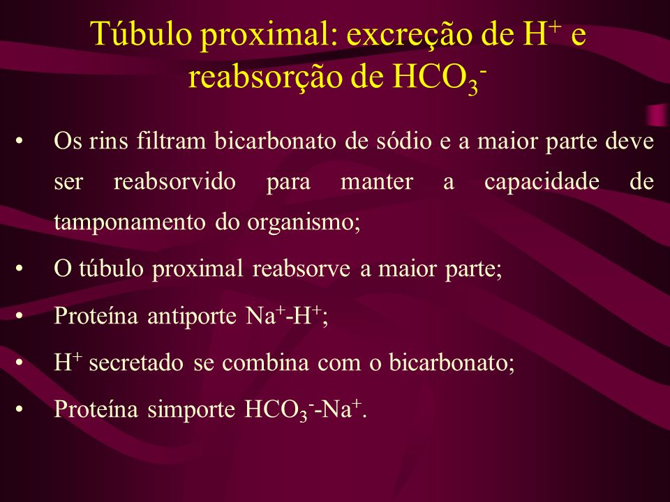 Túbulo proximal: excreção de H + e reabsorção de HCO 3 - Os rins filtram bicarbonato de sódio e a maior parte deve ser reabsorvido para manter a capac