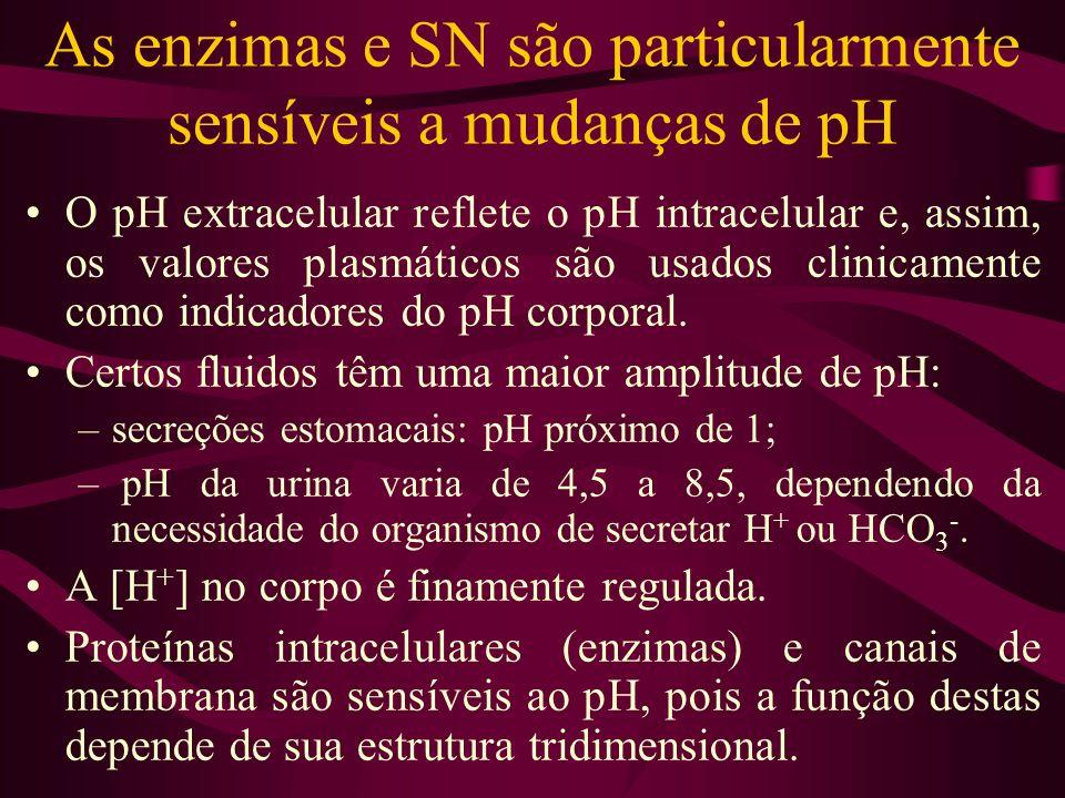 As enzimas e SN são particularmente sensíveis a mudanças de pH O pH extracelular reflete o pH intracelular e, assim, os valores plasmáticos são usados