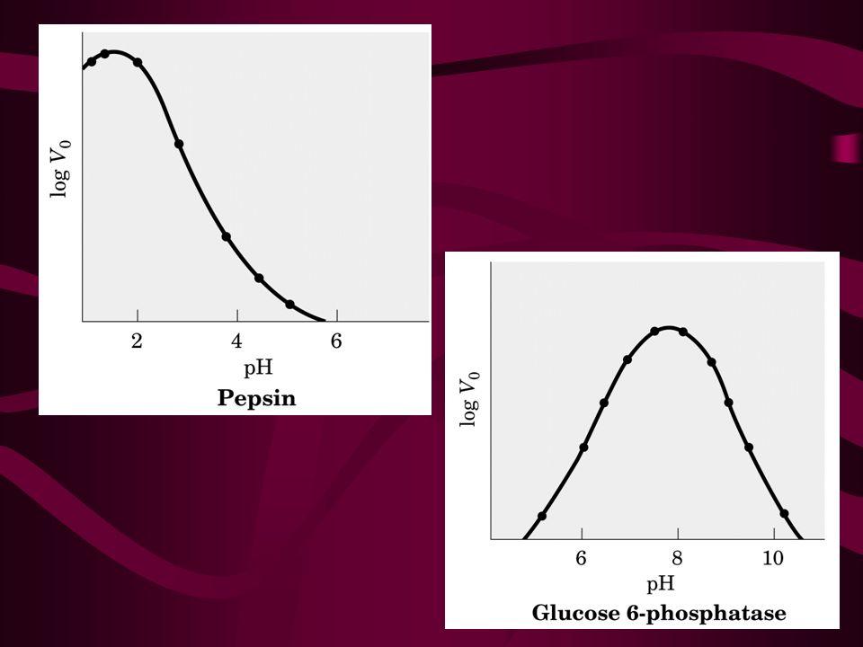 pH anormal pode afetar significativamente a atividade do SN pH baixo (acidose) – neurônios tornam-se menos excitáveis, resultando na depressão do SNC; Indivíduos tornam-se confusos e desordenados - coma pH alto (alcalose) – neurônios tornam-se hiperexcitáveis, desencadeando um potencial de ação ao menor sinal.