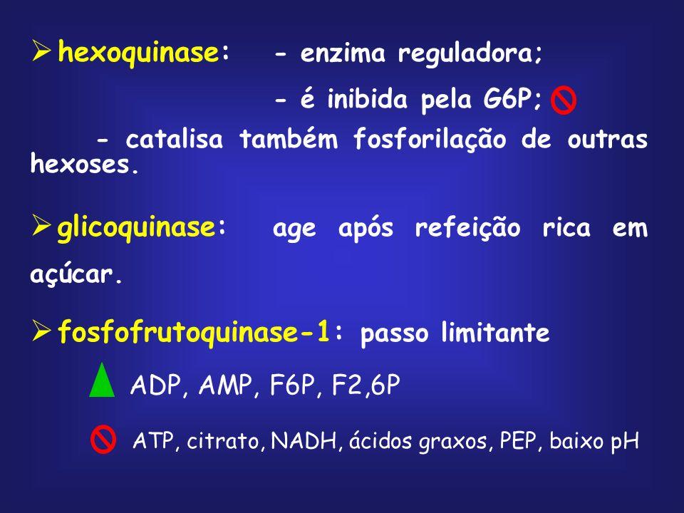 aldolase frutose 1,6-bifosfato diidroxiacetona fosfato gliceraldeído 3-fosfato triose fosfato isomerase