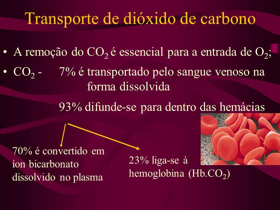 Transporte de dióxido de carbono A remoção do CO 2 é essencial para a entrada de O 2 ; CO 2 -7% é transportado pelo sangue venoso na forma dissolvida