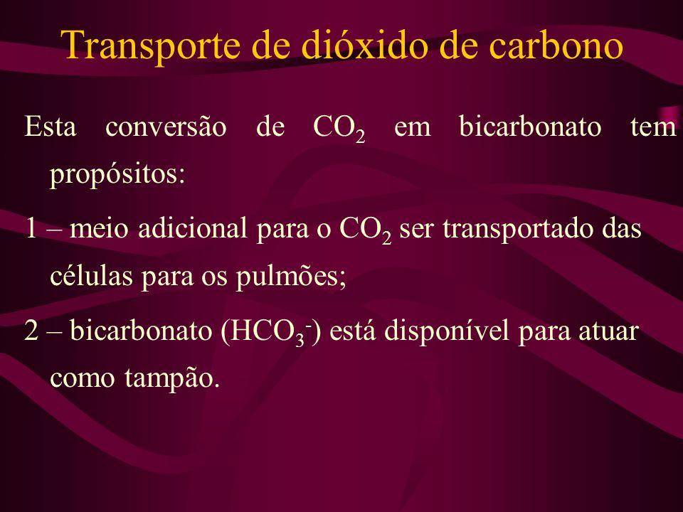 Transporte de dióxido de carbono Esta conversão de CO 2 em bicarbonato tem propósitos: 1 – meio adicional para o CO 2 ser transportado das células par
