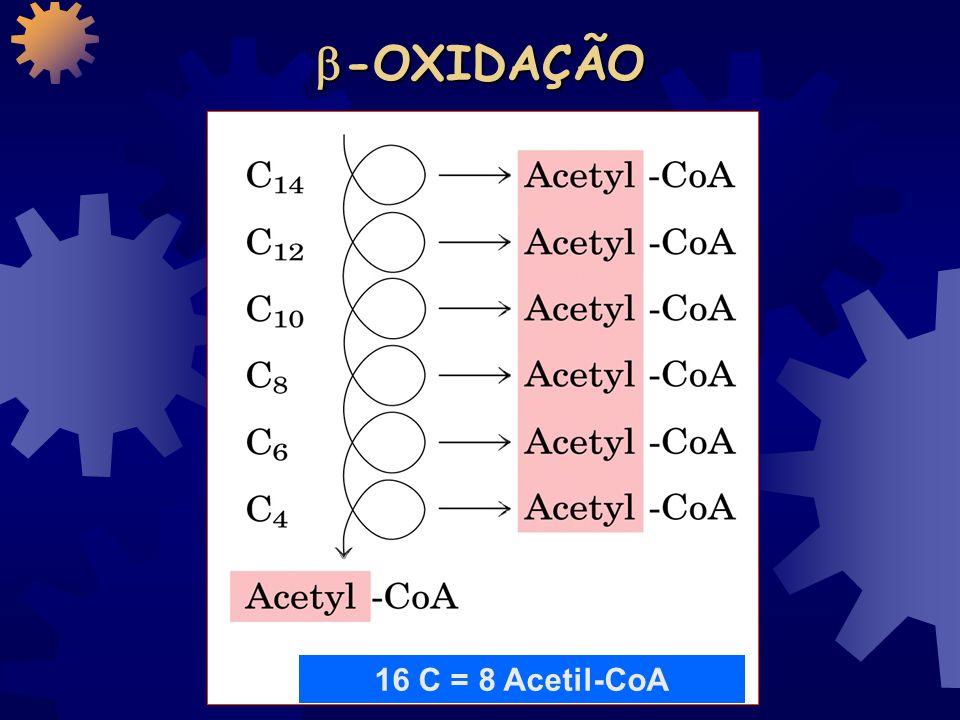 ENTRADA do ÁC. GRAXO NA MITOCÔNDRIA Espaço intermembranas carnitina Carnitina aciltransferase I Carnitina aciltransferase II malonil-CoA inibe É o pri