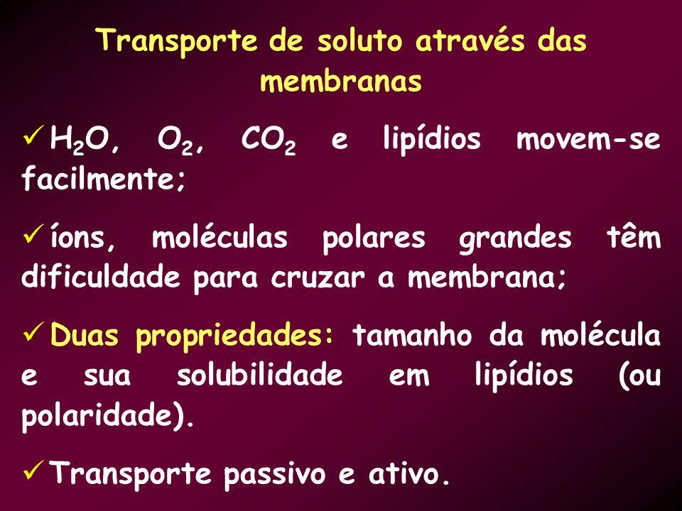 Transporte de soluto através das membranas H 2 O, O 2, CO 2 e lipídios movem-se facilmente; íons, moléculas polares grandes têm dificuldade para cruza